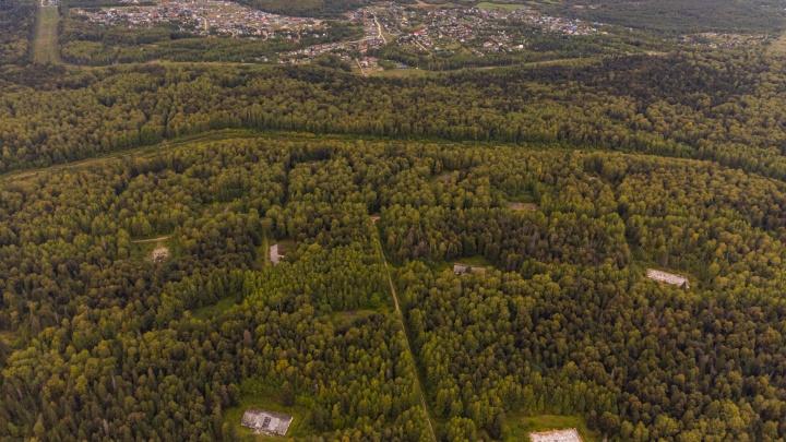 Власти заговорили о строительстве нового кладбища в Кировском районе — если не получится открыть Восточное