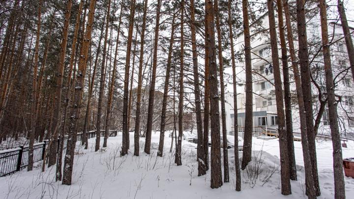 В Челябинске подписали документ о выделении денег на центр детской хирургии в бору, несмотря на запрет суда