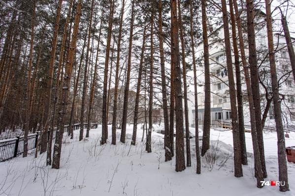 Суд до сих пор не одобрил строительство корпуса детской хирургии в Челябинском городском бору, но власти уже подписали документ о выделении денег на объект