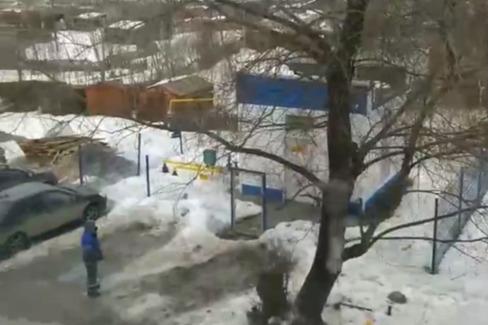 В Перми дерево упало на газовую трубу — без газа остались более 100 частных домов