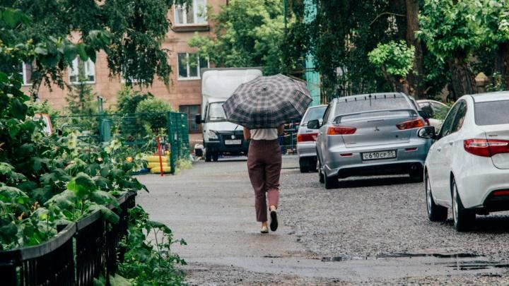 Омские синоптики спрогнозировали жару и град на выходные