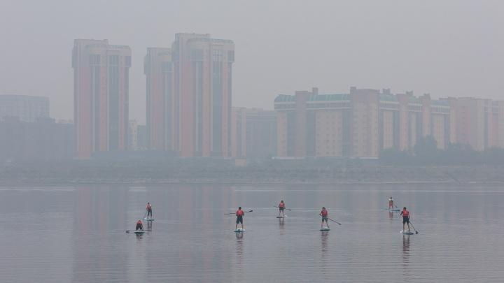 Мэр Красноярска рассказал Путину, как город пережил прошлые дымные выходные