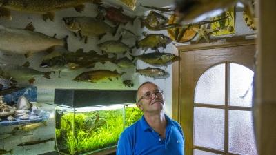 Какая рыба самая живучая, и почему нельзя сделать чучело тайменя: история таксидермиста-самоучки из Уфы