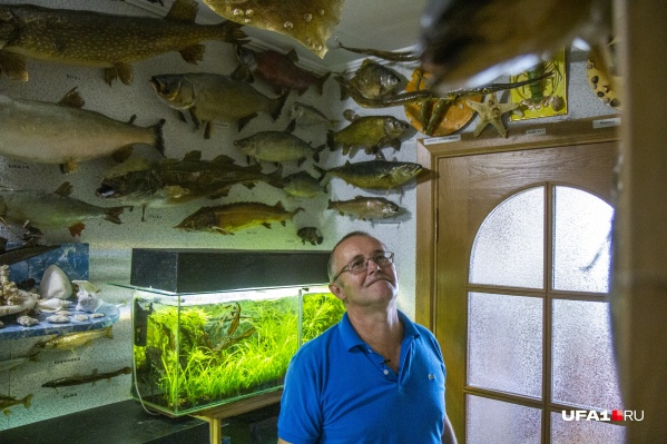 Комната Андрея больше напоминает гигантский аквариум, где вдоль стен плавают его обожаемые рыбы