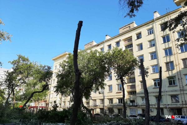 Управляющие компании так же, как и все остальные, должны получать разрешение на обрезку и снос деревьев