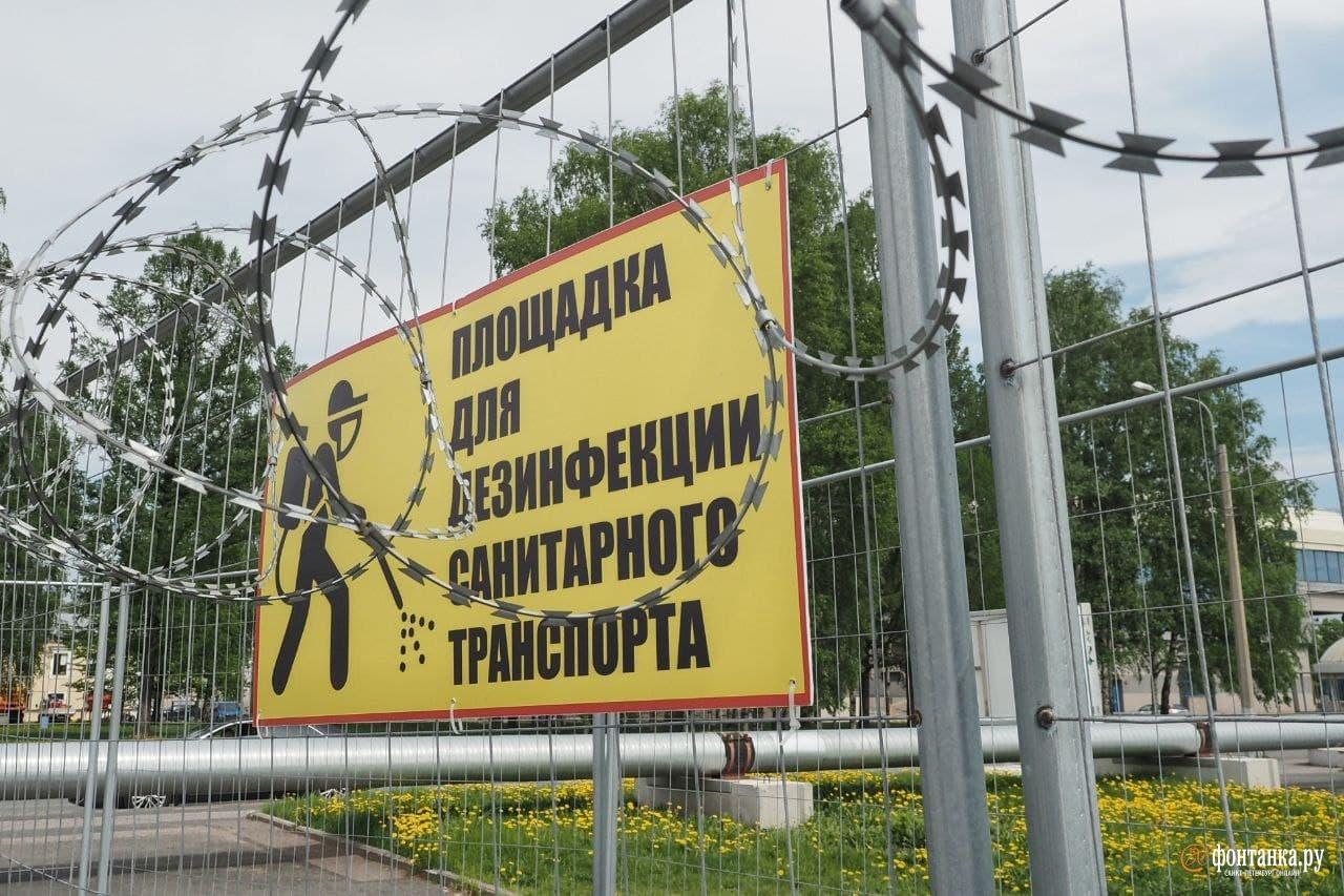 автор фото Михаил Огнев / «Фонтанка.ру»