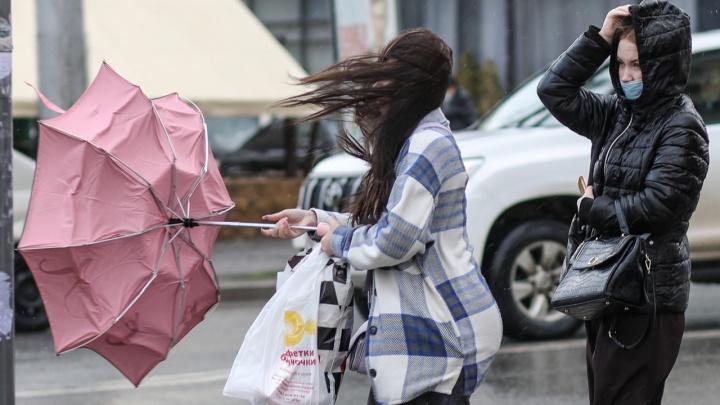 На Волгоград и область надвигаются дожди с грозой и ураганным ветром