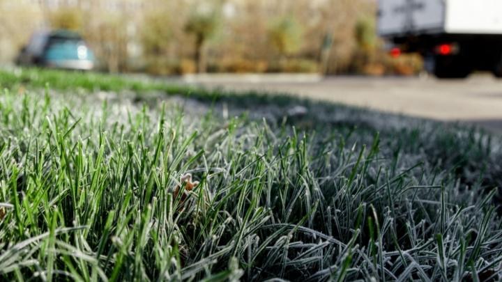 МЧС предупреждает: на Волгоградскую область надвигаются заморозки до -1 ºС