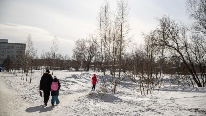 В мэрии Новосибирска назвали нелегитимной независимую оценку пустыря наДемакова