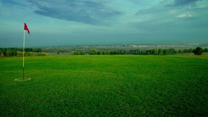 Красноярский гольф-клуб ищет в штат отпугивателя ворон. Зарплата — до 50 тысяч рублей