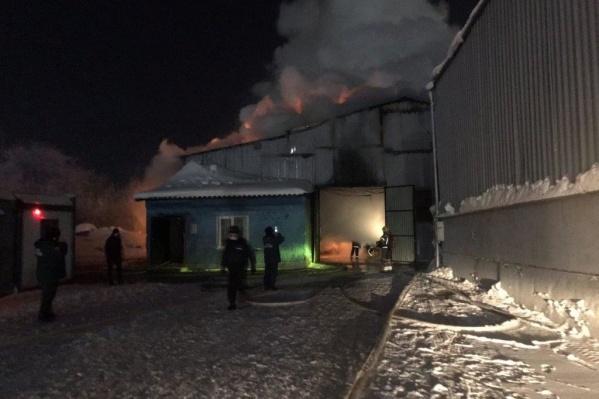 Общая площадь пожара составила 375 квадратных метров