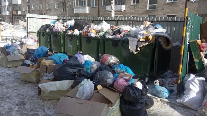 Власти рассказали, когда вывезут горы мусора из новосибирских дворов в центре