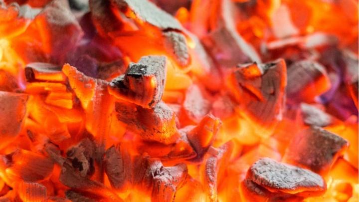 Где купить древесный уголь, чтобы отлично пожарить мясо