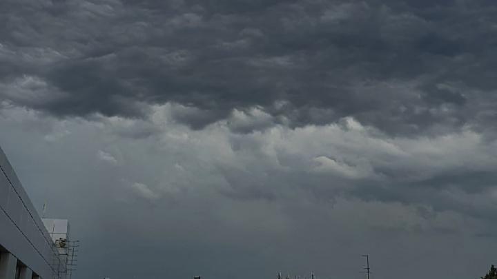 Ураган пришел из Москвы: Ярославскую область накрыла буря