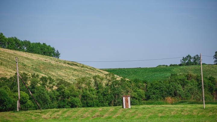 Власти Кузбасса создали еще одну особо охраняемую территорию. Там нашли 5 видов краснокнижных растений