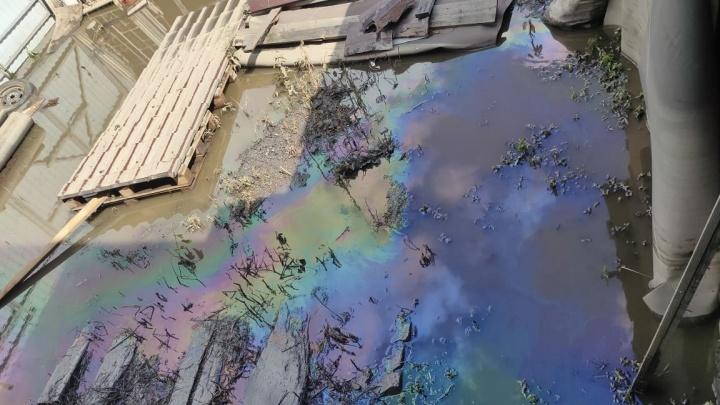 Всё в мазуте: в Верхней Салде после наводнения случилось экологическое ЧП