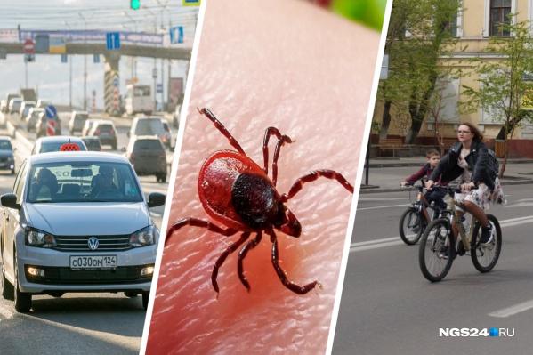Все дни майских каникул мы следили за событиями в Красноярске и стране