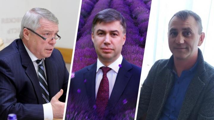 Засадить Ростов лавандой, а журналиста — за решетку: итоги недели