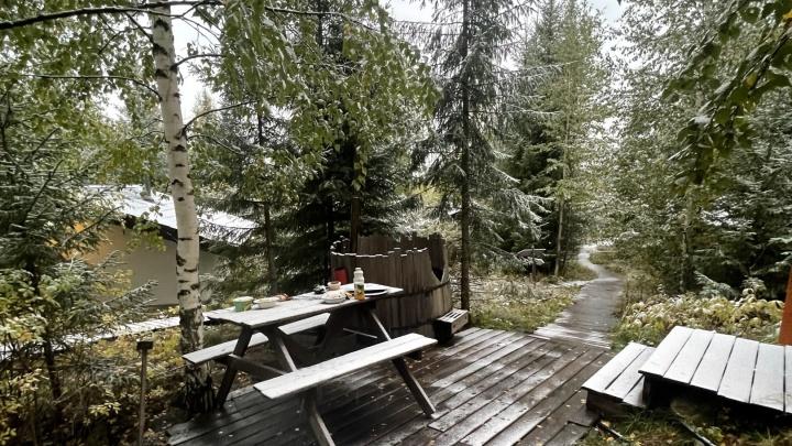 Ждать ли снега? Погода в Екатеринбурге изменится к концу недели