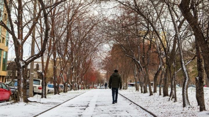 Новосибирск ждет первого снега. В какие даты он радовал горожан за последние 7 лет?