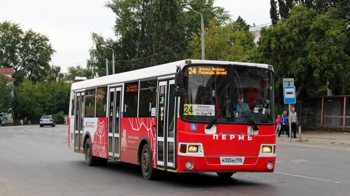 В Перми с 1 июня изменится автобусный маршрут № 24
