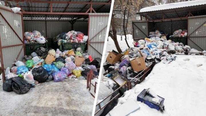 Мусоровоз несколько дней не мог проехать из-за снега во двор в центре Новосибирска — там выросла гора отходов