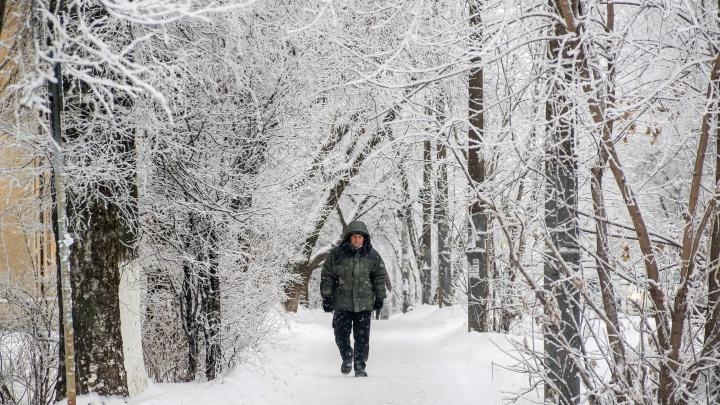 Последние дни новогодних каникул в Нижегородской области будут серыми и снежными