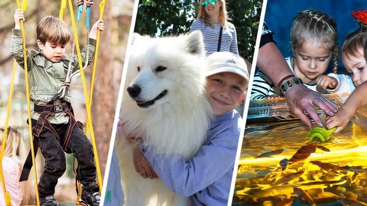 Кормим карпов из бутылочки, катаемся на хаски и покоряем горы: 10 идей для длинных майских выходных с детьми