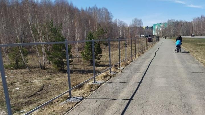 В мэрии рассказали, что появится за выросшим забором у леса на Северо-Западе Челябинска