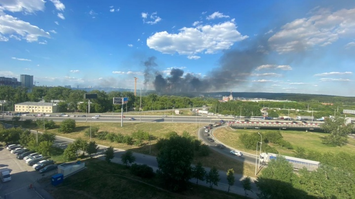 В ЦПКиО из-за тополиного пуха произошел крупный пожар