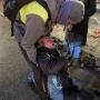 В полиции извинились перед женщиной, которую пнул силовик на протестах в Петербурге