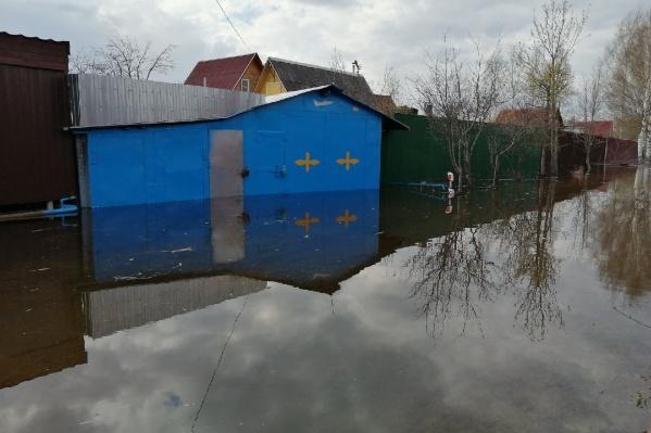 СНТ «Мономер» у Туношны глобально затопило. Из 310 дачных участков под водой оказалось 130