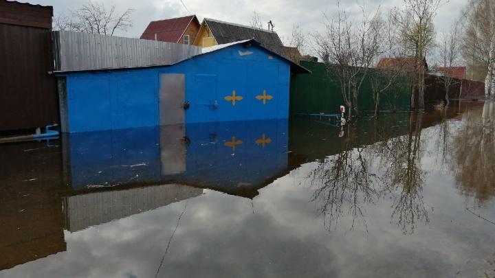 Люди начали перебираться во временные убежища: в Ярославской области резко выросло количество затопленных участков