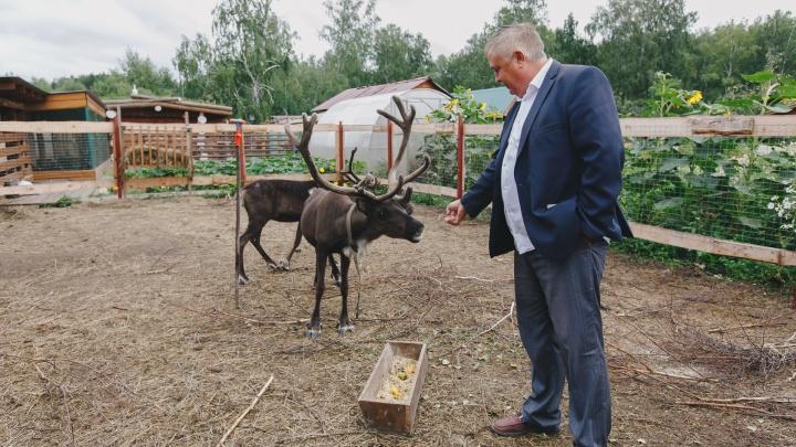 В планах — варить сыр и открыть детскую школу фермеров: кто помогает аграриям вырастить бизнес на земле