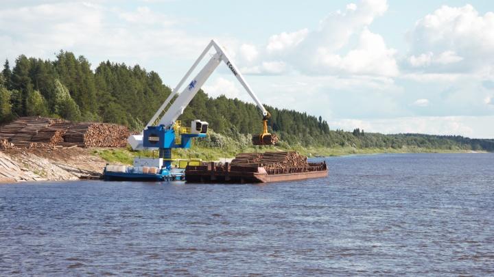«Беломорская Сплавная Компания» инвестирует в регион 500 миллионов рублей: куда потратят деньги