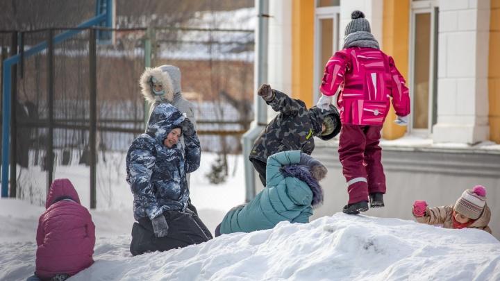В Кургане и Шадринске отменят очные занятия в школах из-за морозов