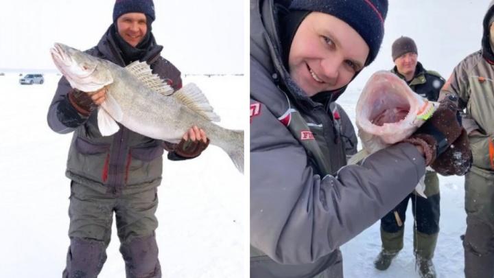 На Обском водохранилище выловили рыбу-монстра— видео, как три человека вытаскивают ее из лунки