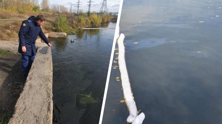 Следы нефтепродуктов обнаружили в реке Теплой в Красноярском крае. Специалисты убирают последствия