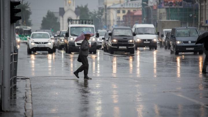 Идет жара до +31 градуса, а потом резко похолодает: дождливый прогноз для Новосибирска