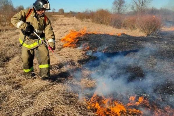 Из-за сухой и теплой погоды огонь быстро распространяется по территории
