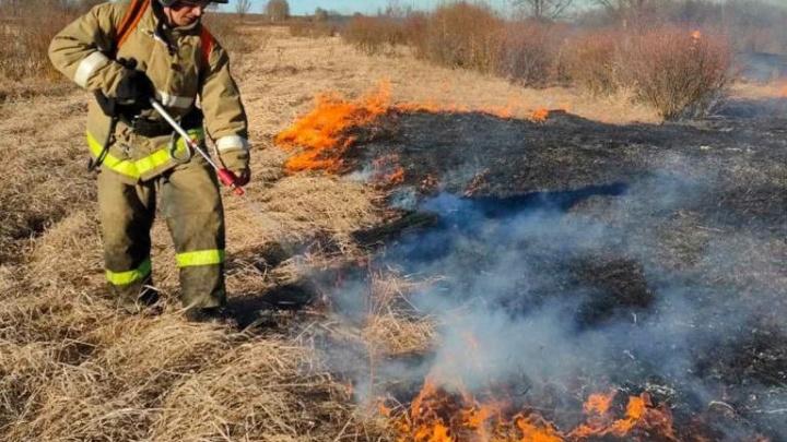 За сутки выгорели 20 тысяч гектаров в Тюменской области — огонь уничтожает леса и поля