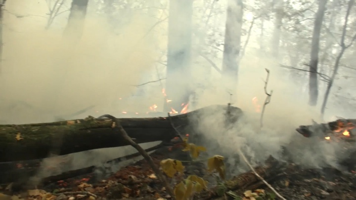 Адище: к тушению пожара в Борском районе привлекли военных