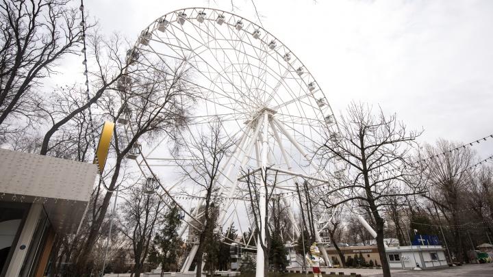 На «Зелёном острове» планируют установить 65-метровое колесо обозрения со световой анимацией