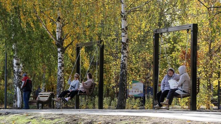 «Это явление бывает один-два раза в пять лет»: бабье лето в Нижегородской области может не наступить