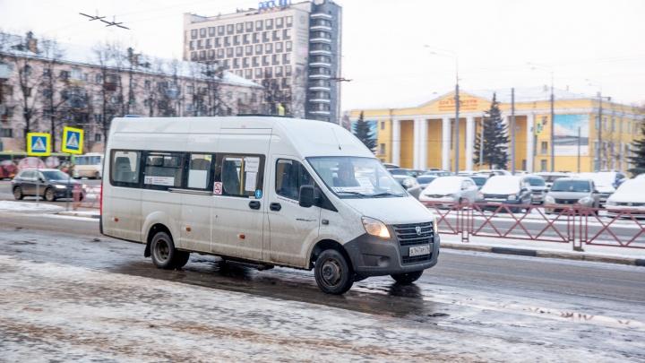 УФАС уличило областной департамент в сговоре с частным перевозчиком