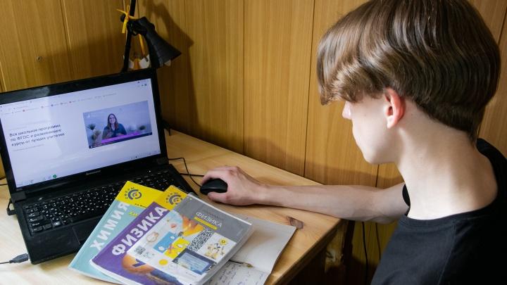 Тюменские родители стали активнее подключать образовательный сервис «Ростелеком. Лицей» для детей