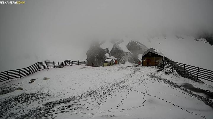 На Красной Поляне в Сочи выпал снег. Подборка из соцсетей