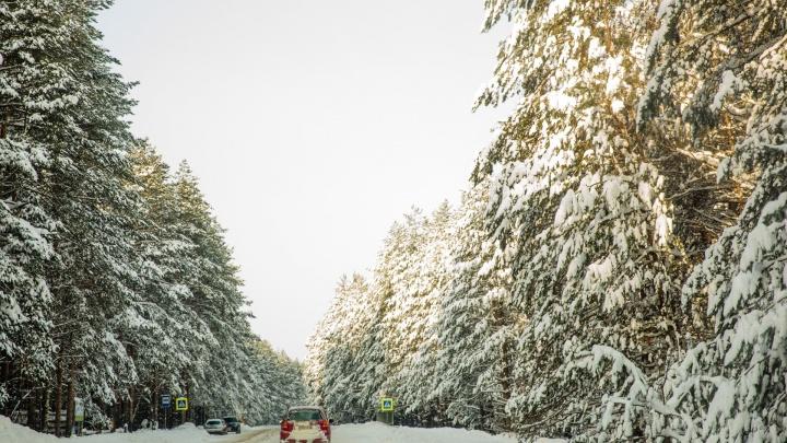 Сегодня — Покров. По народным приметам определяем, какой будет погода до конца осени и зимой