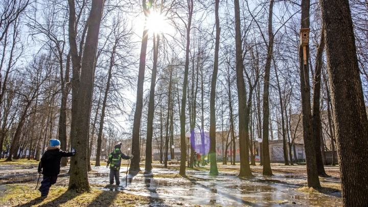 «Две волны холода»: синоптики рассказали, каким будет апрель в Ярославле