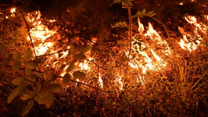 Губернатор пообещал к концу дня полностью потушить крупный пожар под Камышловом